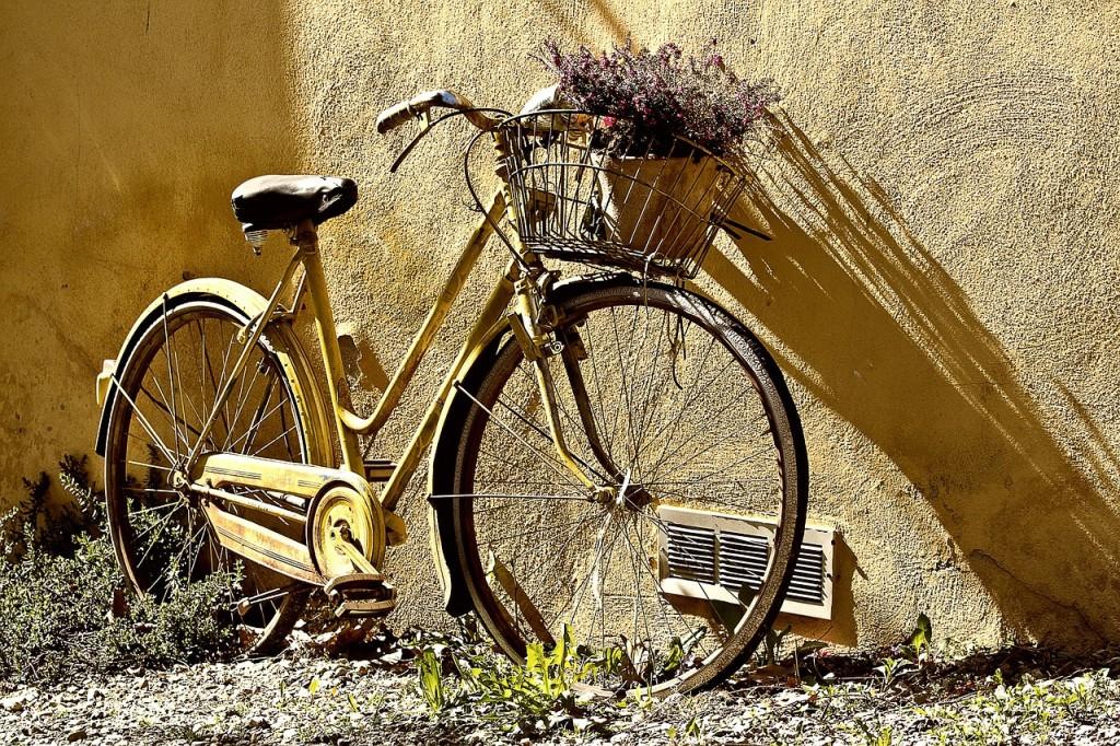 Bike To Work Day in Boulder